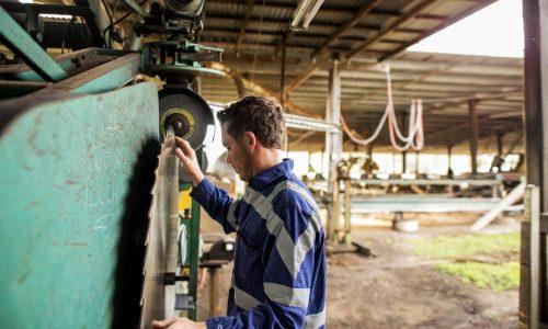 Australian worker at sawmill using machinery